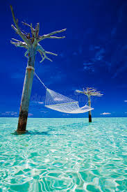 empty over water hammock in the middle of lagoon stock image