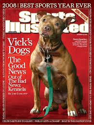 boxer dog kills man pit bull myths dangerous dogs dogsbite org
