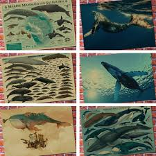 online get cheap vintage whale poster aliexpress com alibaba group