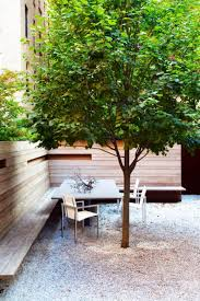 modern backyard with gravels and linden shade tree shade trees