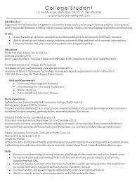 kennel assistant resume kennel worker cover letter high school
