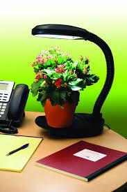 Good Desk Plants Amazon Com Hydrofarm Flf27d Desktop Plant Light With 27 Watt Cfl