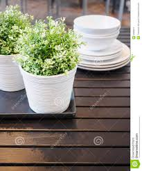 green plants on wooden table home interior decoration stock photo