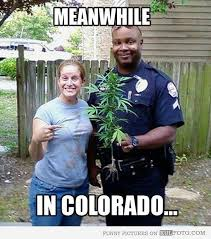 Funny Memes About Weed - 20 most funny weed pictures and photos