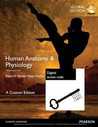 Human Anatomy And Physiology Courses Online Human Anatomy U0026 Physiology Global Edition Custom Edition Ebook