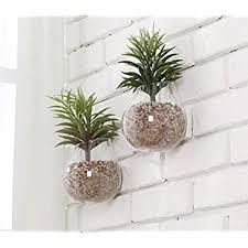 Hanging Glass Wall Vase Amazon Com Mkono 2 Pack Wall Hanging Vase Glass Flower Plant