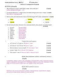 Elements Of Fiction Worksheet Carbohydrates Worksheet Carbohydrates Polysaccharide
