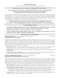 Resume Sample Key Account Manager by Resume Account Manager Resume