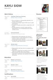 cover letter employment examples essay on skillet band relocation