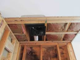 gallery of black mold in basement walls has how to remove mold