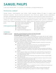 sample professional summary resume resume examples for safety professionals human resources resume professional system safety engineer templates to showcase your talent myperfectresume safety professional resume