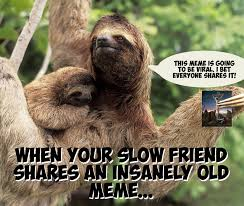 Sloth Meme Images - sloth meme by blackenwhitedesign on deviantart