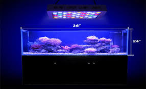 led reef lighting reviews amazon com wattshine 180w led coral light large angle dimmable
