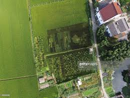 Map Of Shanghai China by Map Of China Grow In Rice Field In Shanghai Photos And Images