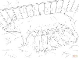pig and piglets coloring page free printable coloring pages
