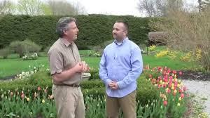 flower garden plans for beginners planning a flower bulb garden tips for beginners youtube
