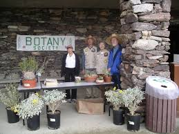native plant center botany festival u0026 native plant sale anza borrego foundation abf