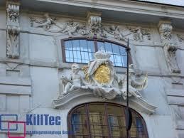 taubenabwehr balkon killtec schädlingsvernichtung angebot wien schädlingsvertreiber