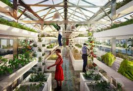 how to grow vegetables in a greenhouse lettuce spinach
