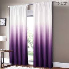 Purple Kitchen Designs by Purple Kitchen Curtains Inspirations Also Picture U2013 Skip Decor