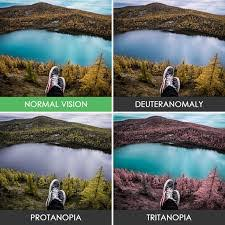Color Blindness Simulator Tritanopia U2013 Vision