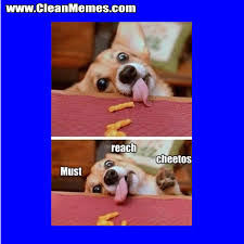 Cheetos Meme - must reach cheetos clean memes the best the most online