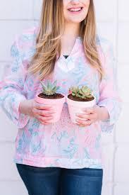 diy ombre painted pots best soil for succulents best friends