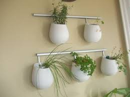 Hanging Wall Planters 179 Best Plants Images On Pinterest Plants Gardening And Flowers