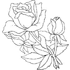 imagenes para colorear rosas dibujos de rosas para colorear y pintar