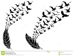 feathers with flying birds vector stock vector image 59347167