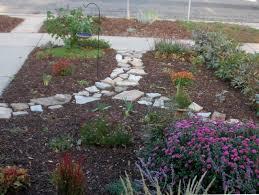 alternatives to grass in backyard yard where no grass grows alternatives now i am looking forward