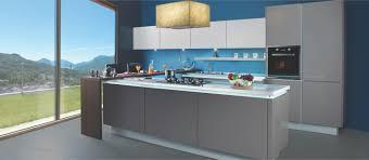 Sleek Kitchen Cabinets by Modular Kitchen Cabinets Kitchen Appliances U0026 Accessories