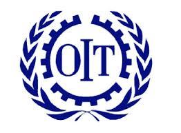 bureau international du travail l oit lance un avis de recrutement projet en tunisie création d
