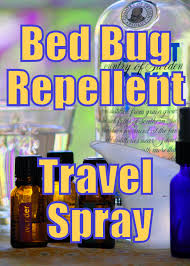 Rubbing Alcohol Kills Bed Bugs Killing Bed Bugs With Alcohol Vnproweb Decoration