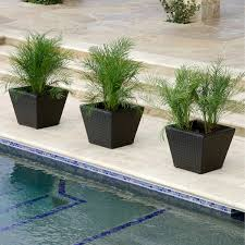 Where To Buy Large Planters by Planters Costco