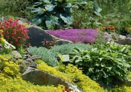 Best Rock Gardens Best Rock Gardens Lovable Retaining Wall Rock Garden