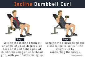 Bench Bicep Curls Incline Dumbbell Curl How To Do Benefits Forms Video