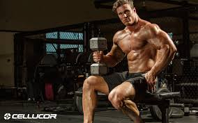 chest workout the push stretch method for killer chest gains