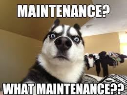 U Serious Meme - u serious dog memes quickmeme