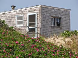 memoirous dune shacks thalassa