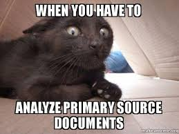 Meme Source - when you have to analyze primary source documents schitzo cat
