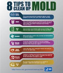 tips on cleaning mold after a flood blogs cdc