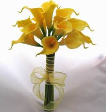 Calla Lily Vase Life Yellow Mini Calla Lily Toss Bouquet Toss Bouquets Yellow Calla