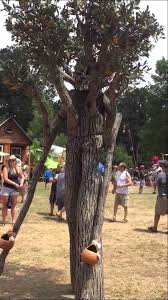 cool living ent style tree costume by michael shaffer