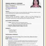 Example Of Making Resume by 7 Curriculum Vitae Format For Job Application Medical Report