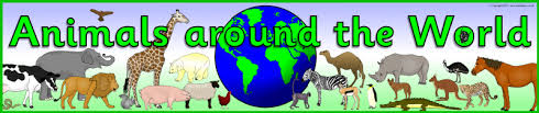 animals around the world display banner sb5327 sparklebox