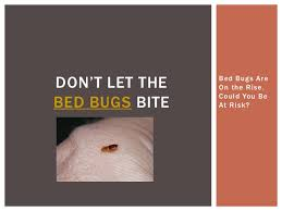 Dont Let The Bed Bugs Bite Don U0027t Let The Bed Bugs Bite Bed Bugs Are On The Rise Could You Be U2026