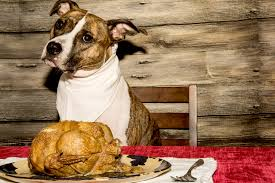 what can my eat at thanksgiving dinner unleashed