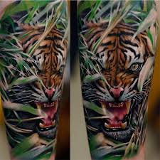 tiger best ideas gallery