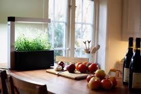 potager de cuisine potager de cuisine herbie noir 6 plantes